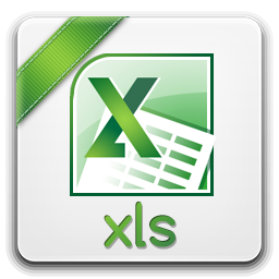 Microsoft Excel Document